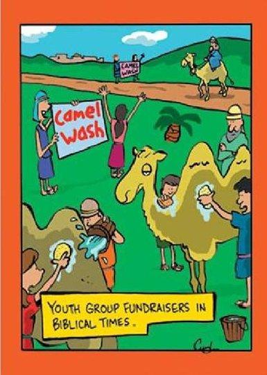 CamelWash
